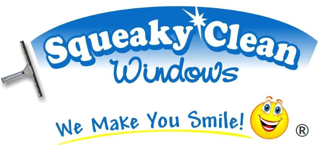 ... in Windows Cleaning, Eavestroughs Cleaning, and Christmas Lights setup